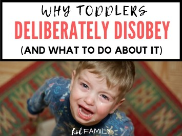 Why Toddlers Deliberately Disobey and What to Do About It